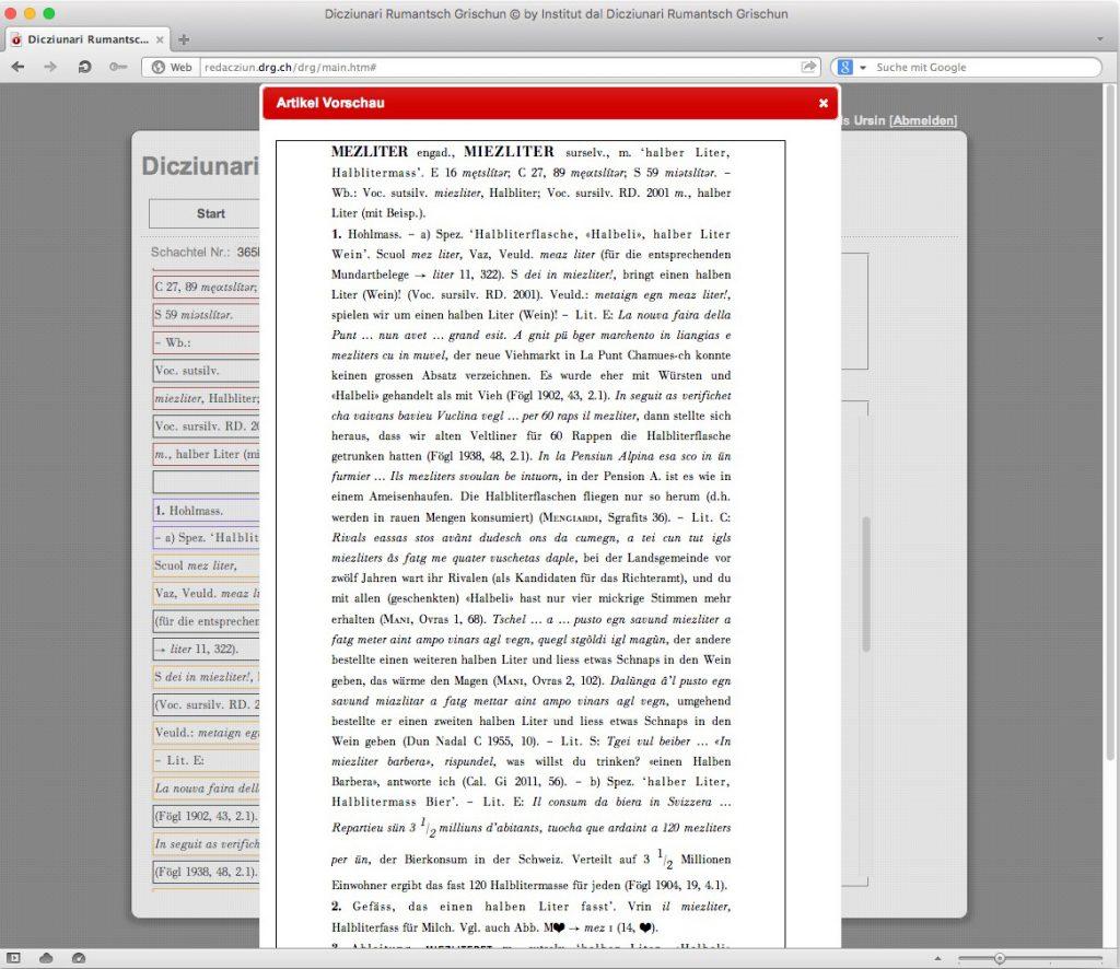 Abb. 9: Vorschau des bereits erfassten Artikels.